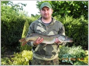 Szczupak - 75cm długości!!!